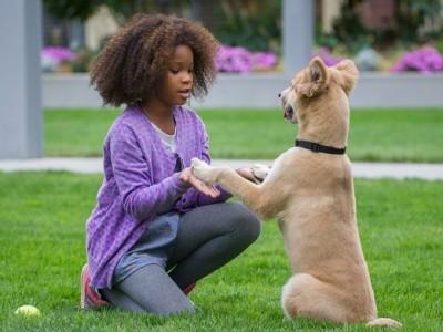 Annie. Imagen de la película.