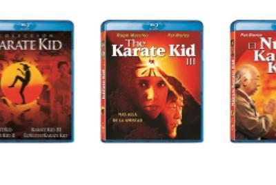Karate Kid Saga